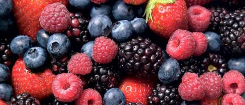 Fructele de padure va mentin creierul tanar!