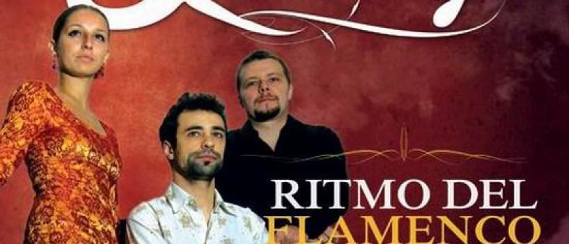 """""""Live in The Lounge"""" – cu Ritmo del Flamenco, la The Ark"""