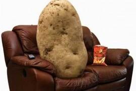 "Marea Britanie creste o generatie de ""cartofi de canapea""!"