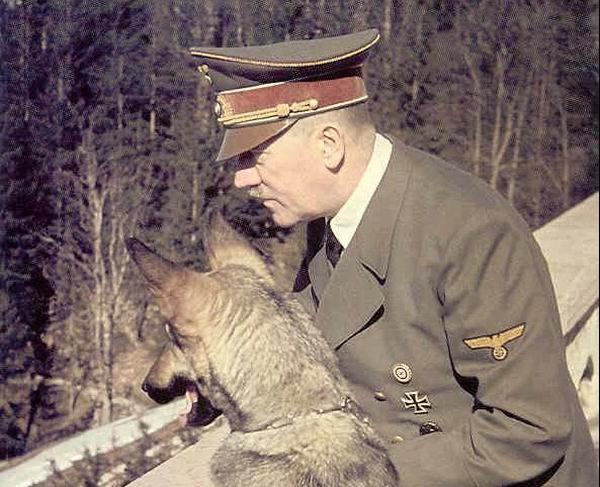 Nazistii au incercat sa ii invete pe caini sa vorbeasca!