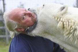 Mark Dumas – omul care se imbratiseaza cu ursul polar!