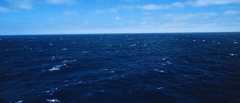 Oceanele lumii au intrat in faza de extinctie!
