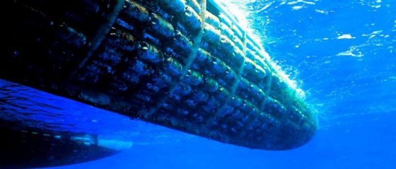 Catamaranul construit din 12.000 de sticle de plastic soseste la National Geographic!