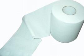 Masuri anti-criza: Scolile spaniole au impus restrictii la folosirea hartiei igienice!
