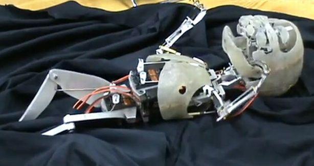 Bebelusii din sitcom-uri vor fi inlocuiti de roboti?! (VIDEO)