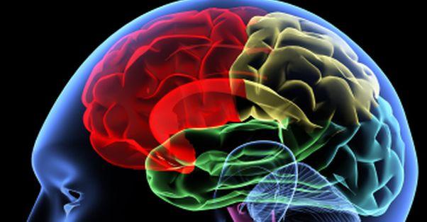 Stresul extrem iti micsoreaza creierul!