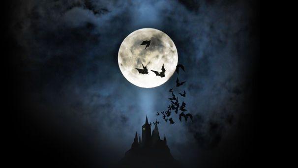 Workshop-uri speciale si divertisment variat la Festivalul filmului horror Luna plina!