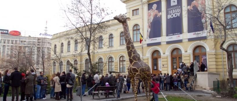 Expozitia THE HUMAN BODY: record de vizitatori in primul weekend de la deschidere