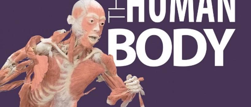 Seminar la Antipa: Cancerul de piele – suntem suficient de informati?