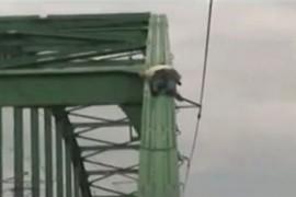 Un sarb a adormit pe un pod si o intreaga armata s-a chinuit sa-l salveze! (VIDEO)