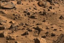 Viata pe Pamant a venit de pe… Marte!
