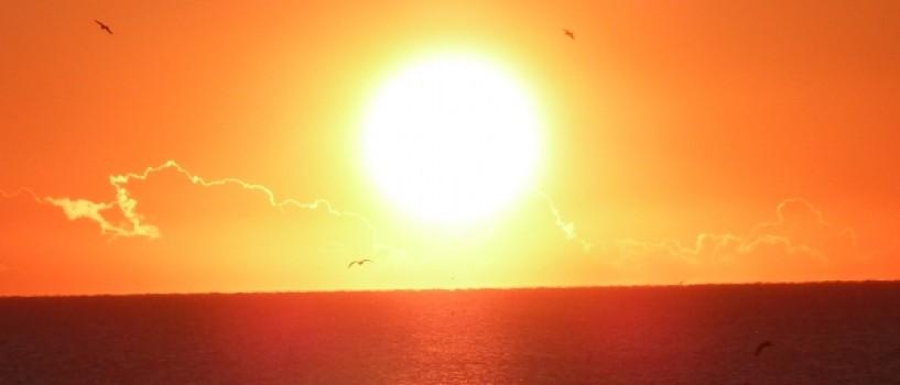 In numai 50 de ani viata pe Terra se va schimba radical, sustin oamenii de stiinta!