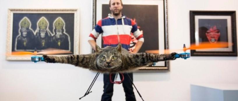 Artistul care si-a transformat pisica in drona, construieste acum un multicopter dintr-o vaca!