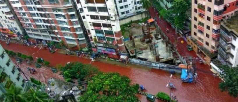 Au curs rauri de sange pe strazile din Dhaka in ajun de Eid al-Adha!