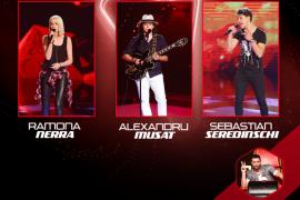 Vineri incep show-urile live Vocea Romaniei!