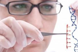 Descoperire uriasa in medicina. Noua metoda de editare genetica repara gene defecte, intarzie imbatranirea si vindeca boli incurabile!