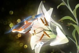 Bun venit in viitor! Dronele responsabile cu polenizarea!