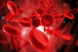 Cat sange avem in organism si cat ne putem permite sa pierdem?