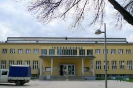 Curtea Suprema austriaca a redus la 4 ani pedeapsa unui refugiat care a violat un baiat de 10 ani!