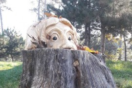 Un artist roman transforma cioturile de copaci in splendide opere de arta!