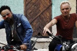 Ascultati si nu o sa va mai saturati: Sting & Shaggy – Don't Make Me Wait!