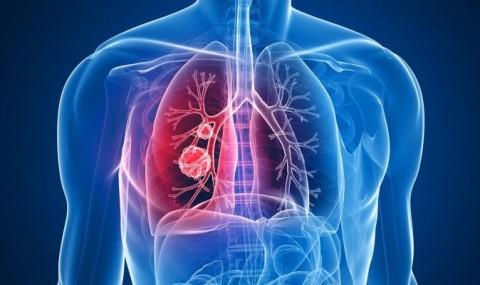 Oamenii de stiinta au descoperit un nou organ in corpul omenesc. Ar putea fi cel mai mare organ uman!